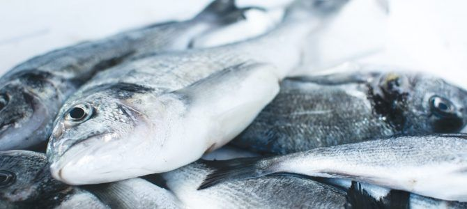 Oily fish supplements may prevent cancer death from muscle wasting