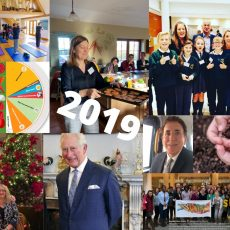 Our 2019 highlights: The NHS Long Term Plan, Social Prescribing Day and Dean Ornish in a field of cows…