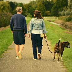 Brisk daily walk lowers odds of getting seven types of cancer, new research finds